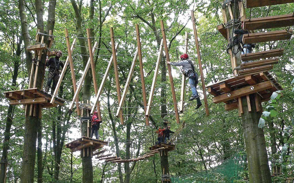 Веревочные парки для детей
