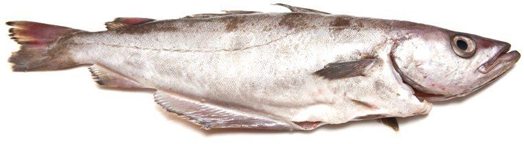 Минтай не только вкусная, но и полезная рыба