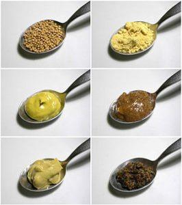 Разновидность горчицы