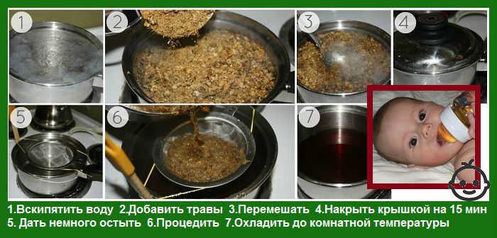 Как заварить ромашковый чай